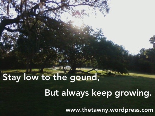 Grounded and Growing