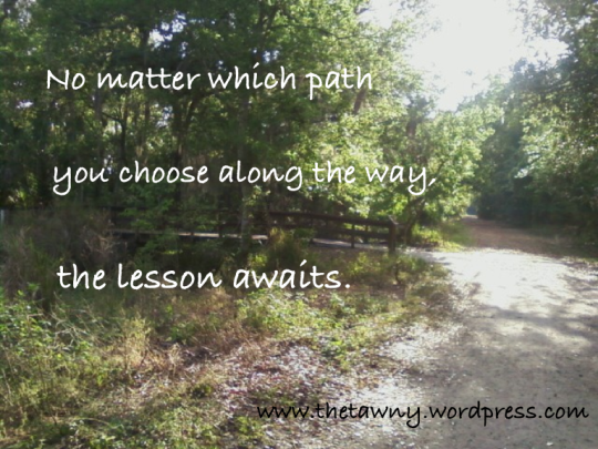 Choose the path