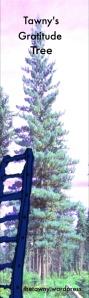 Tawny's gratitude tree