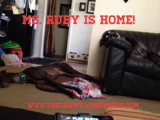 ruby is home