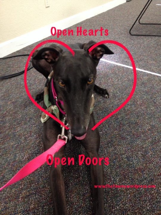 Open Hearts=Open Doors